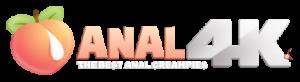 Anal4K Logo - 4K Quality
